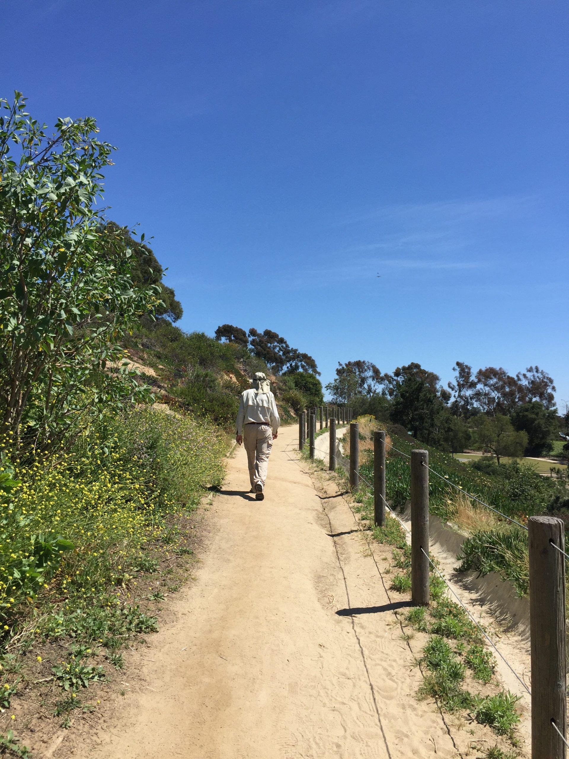 A short walk to help the brain